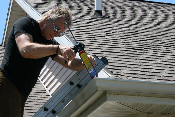 Discount Roof Cleaning253 306 4182 Home